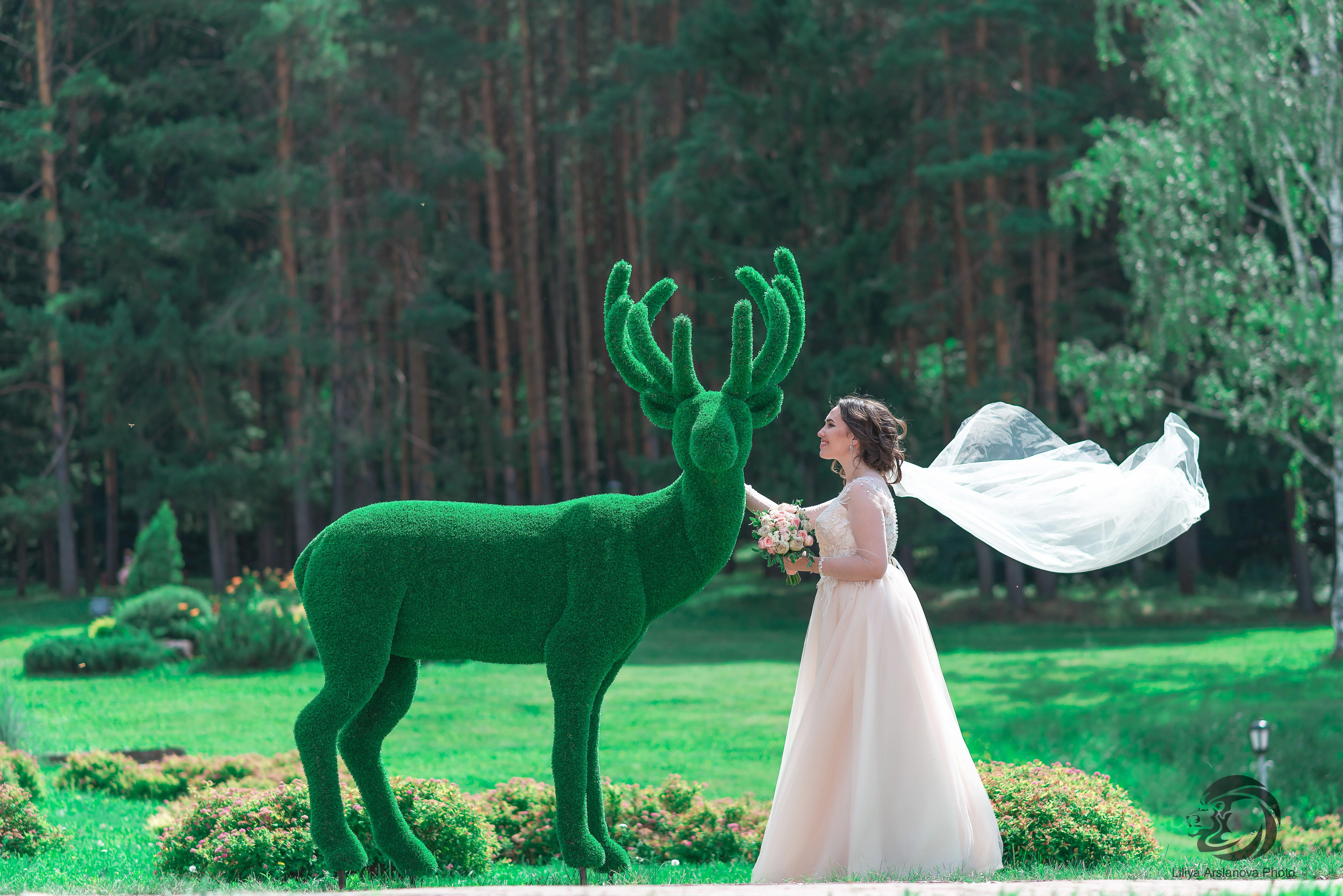 Невеста с оленем. Свадебный фотограф Стерлитамак , свадебный фотограф Красноусольск, фотограф на свадьбу стерлитамак недорого, фотограф свадебный цена стерлитамак санаторий красноусольск