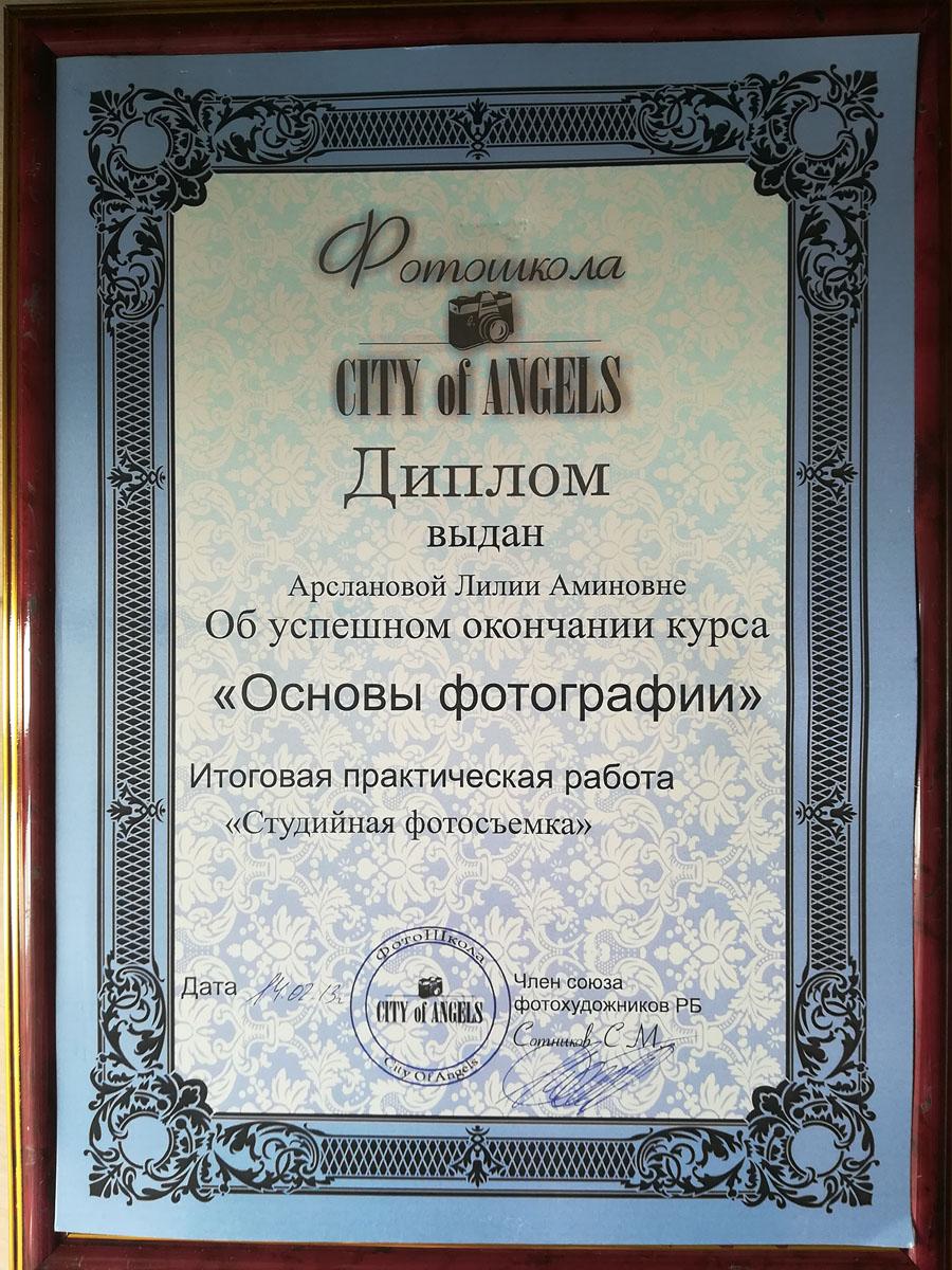 """Диплом """"Основы фотографии"""". 2013"""