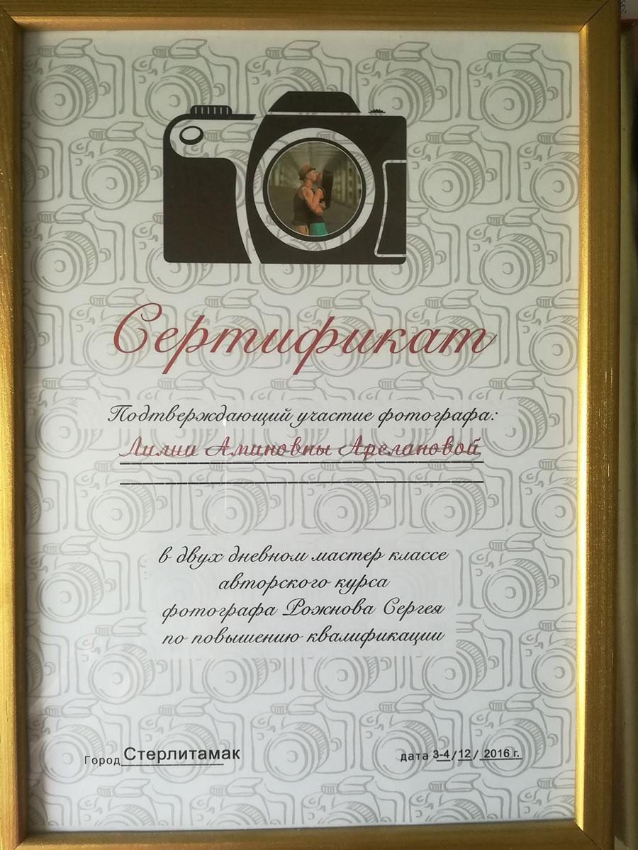 Сертификат. Двухдневный мастер-класс по повышению квалификации. 2016